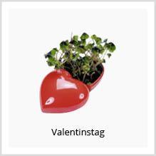 Valentinstag Werbeartikel