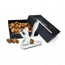 Geschenkset: Eichhörnchen-Nüsse