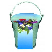 Zinkeimerchen Bunte Blumenmischung