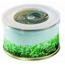 Minigarten Kräuter ohne Magnet