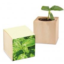 Pflanz-Holz Gaspapier - Basilikum