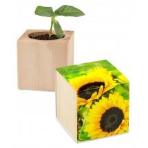 Pflanz-Holz - Standardmotiv - Sonnenblume inkl. 1 Seite gelasert