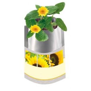 Plant-Bag Sonne