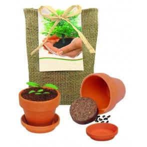 Pflanze Deinen Baum kleines Natur-Säckchen
