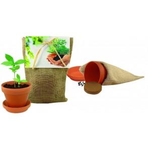 Pflanze Deinen Baum Natur-Säckchen
