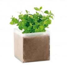 Compost met mint zaadjes MINT - beige