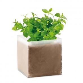 Compost met mint zaadjes MINT