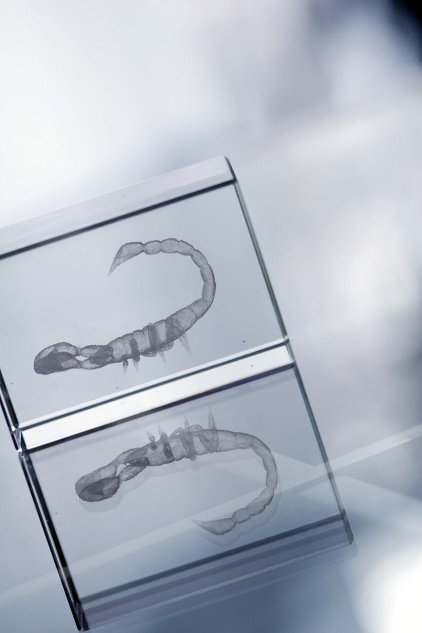 Glas-Quader Macon, Ansicht 8