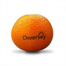Logo-Clementine