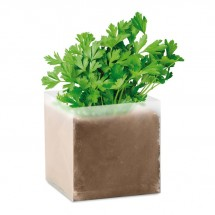 """Pflanz-Set """"Petersilie"""" PARSELY - beige"""