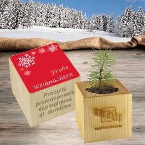 Pflanz-Holz Weihnachten